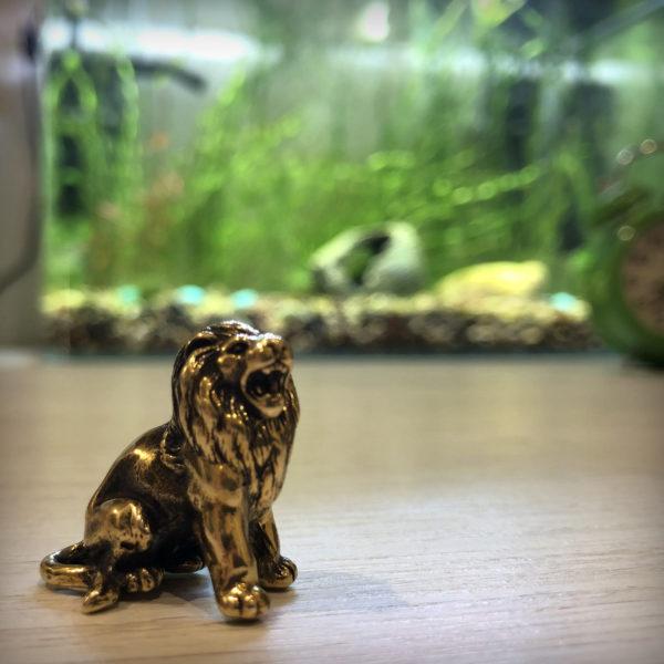 лев статуэтка бронзовая подарок льву фигурка лев купить в крыму
